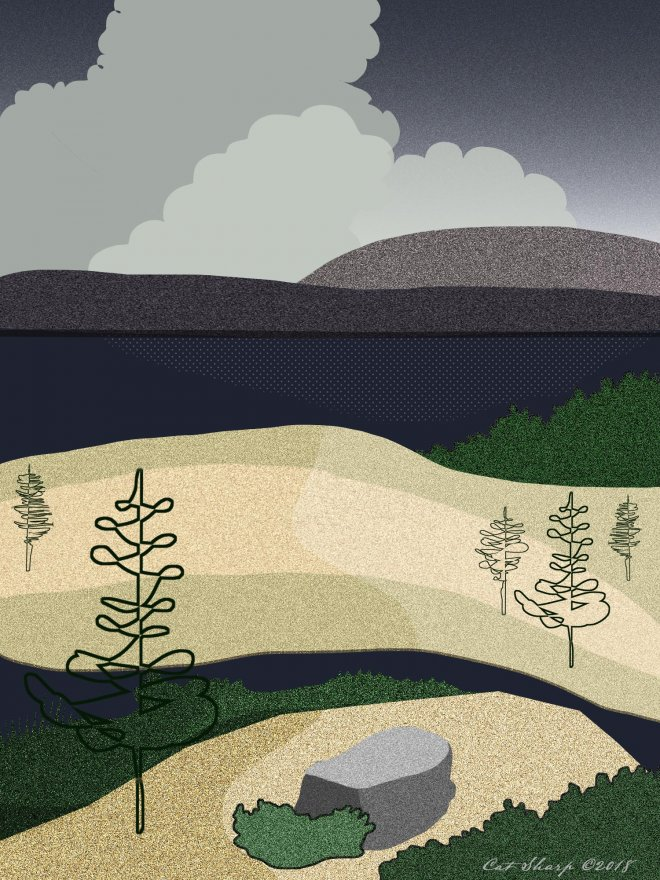 Landscape-copy